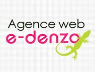 e-denzo agence web